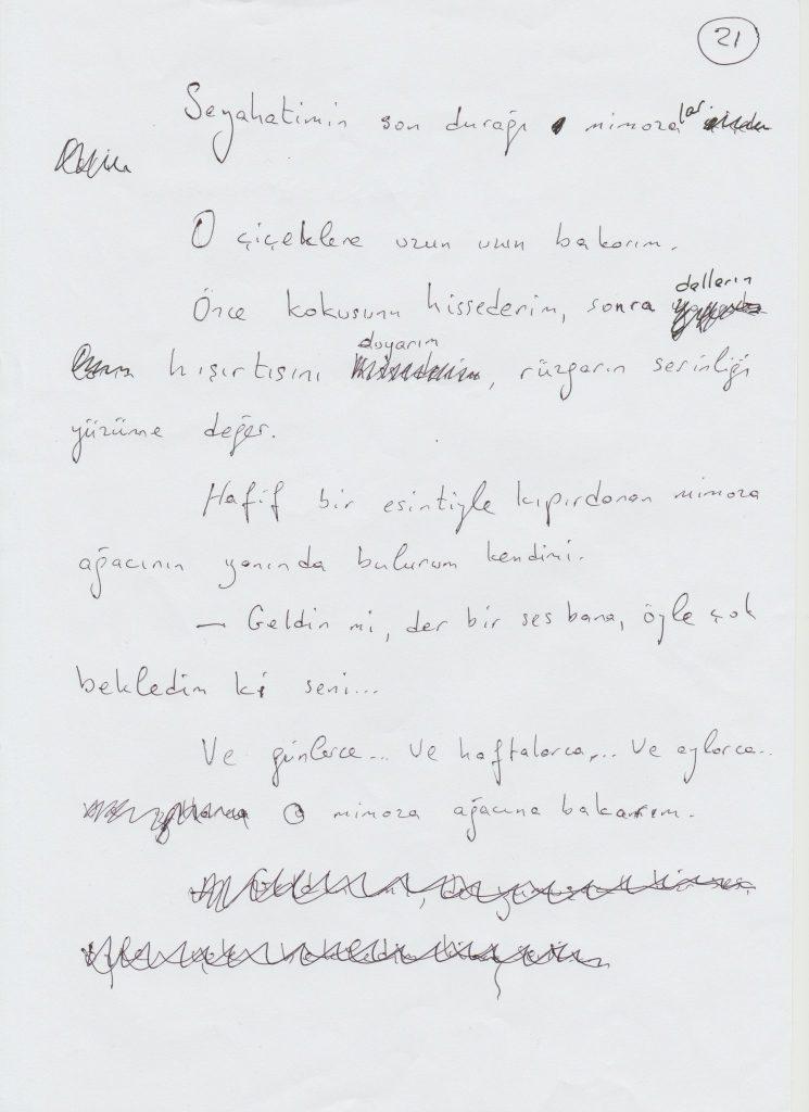 χειρόγραφο αχμέτ αλτάν
